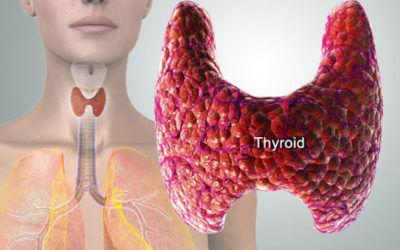 Ξεχάστε το Τ4! Θεραπεία με ολόκληρο θυρεοειδή αδένα