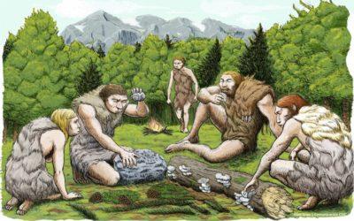 Οι Νεάντερταλ χρησιμοποιούσαν την ασπιρίνη πριν 50.000 χρόνια