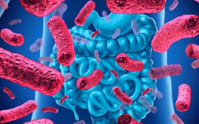 Η μικροβιακή χλωρίδα του εντέρου σχετίζεται με το αν κάποιος νοσήσει σοβαρά από COVID-19