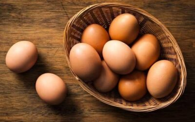 Daily consumption of more than one egg reduces the risk of coronary heart disease